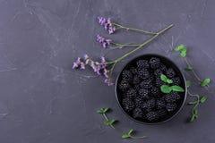 Fruta madura de la zarzamora fotografía de archivo