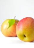 Fruta madura de las manzanas con las hojas Imágenes de archivo libres de regalías