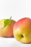 Fruta madura de las manzanas con las hojas Fotografía de archivo libre de regalías