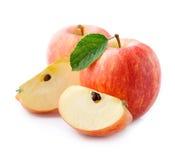 Fruta madura de las manzanas con las hojas Imagen de archivo libre de regalías