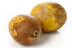 Fruta madura del bael dos Imágenes de archivo libres de regalías