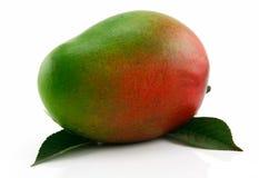 Fruta madura del mango con las hojas verdes aisladas Fotos de archivo libres de regalías