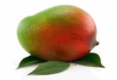 Fruta madura del mango con las hojas verdes aisladas Fotos de archivo