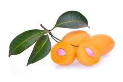 Fruta mariana del ciruelo con las hojas aisladas en blanco Imagen de archivo