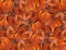 Fruta metamórfica Foto de archivo libre de regalías