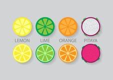 Fruta mezclada de la diapositiva Ilustración del Vector