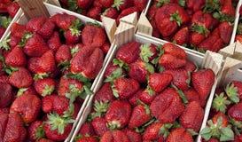 Fruta - morangos Fotografia de Stock Royalty Free