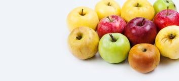 Fruta natural, orgánica de la manzana Concepto de la diferencia Diversas manzanas maduras frescas en diversos colores: rojo, amar fotos de archivo libres de regalías