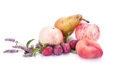 Fruta no branco Fotografia de Stock Royalty Free