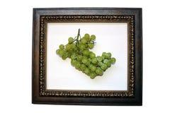 Fruta no frame 1 imagens de stock royalty free