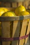Fruta no mercado da borda da estrada Fotos de Stock Royalty Free