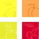 Fruta orgânica ilustração stock