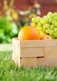 Fruta orgánica de la comida fresca de la cesta de la comida campestre bio Fotos de archivo