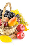 Fruta outonal na cesta Imagem de Stock Royalty Free