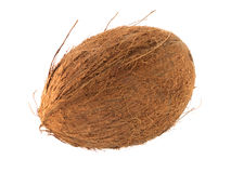 Fruta oval del coco Fotos de archivo