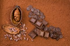 Fruta, pó e chocolate do cacau fotos de stock royalty free