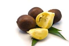 Fruta pelada de Zalacca. Imagen de archivo libre de regalías