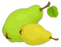 Fruta, peras Imágenes de archivo libres de regalías