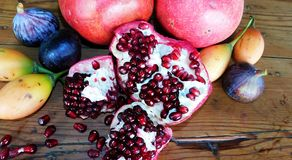 Fruta proibida Fotografia de Stock
