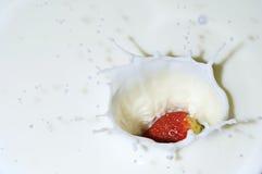 Fruta que está sendo deixada cair no leite Foto de Stock