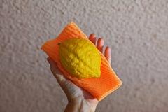 Fruta ritual en mano femenina Fotos de archivo libres de regalías