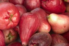 Fruta roja dos de la pera Foto de archivo libre de regalías