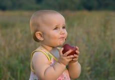 Fruta saboroso. Uma maçã. Imagens de Stock Royalty Free