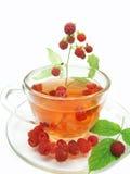 Fruta sana del té de la frambuesa fotografía de archivo libre de regalías
