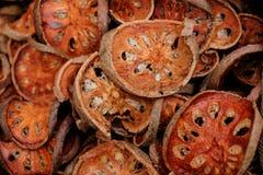 Fruta seca de Bael Imagen de archivo libre de regalías