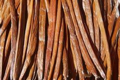 Fruta seca de la vainilla en el proceso de fermentación para calificar sabor de la vainilla en el La Reunion Island imagen de archivo libre de regalías
