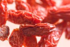 Fruta seca tropical de Goji Fotografía de archivo libre de regalías