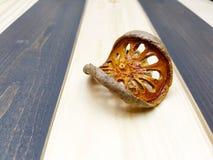 Fruta secada de la bala Foto de archivo libre de regalías