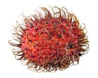 Fruta sin pelar roja del rambutan aislada en el fondo blanco Foto de archivo libre de regalías