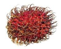 Fruta sin pelar roja del rambutan aislada en el fondo blanco Fotos de archivo