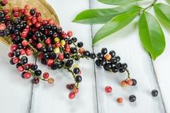 Fruta tailandesa del arándano Imagen de archivo libre de regalías