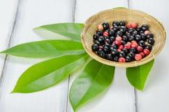 Fruta tailandesa del arándano Fotografía de archivo libre de regalías