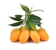 Fruta tailandesa del ciruelo mariano dulce aislada en el backgroun blanco Foto de archivo libre de regalías