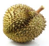 Fruta tailandesa del Durian Imágenes de archivo libres de regalías