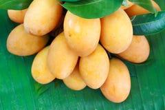 Fruta tailandesa exótica. Maprang, ciruelo mariano Foto de archivo libre de regalías