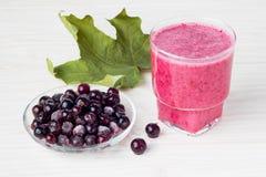 Fruta triturada sana con el yogur Dri mezclado de la grosella negra de las bayas Fotos de archivo libres de regalías