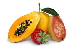 Fruta tropical Imagen de archivo libre de regalías