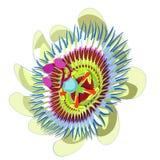 Fruta tropical azul de la flor de la pasión Ilustración del vector Imágenes de archivo libres de regalías