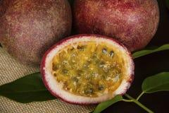 Fruta tropical de la pasión foto de archivo libre de regalías