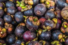 Fruta tropical de la salud fresca de los mangostanes Fotos de archivo libres de regalías
