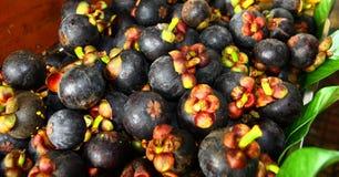 Fruta tropical de los mangostanes Imagen de archivo
