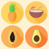 Fruta tropical del vector en círculos: papaya, aguacate, piña y coco Foto de archivo libre de regalías