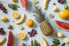 Fruta tropical fotografía de archivo libre de regalías