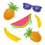 Fruta tropical fresca determinada libre illustration