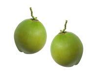 Fruta verde del coco aislada en blanco Imagen de archivo