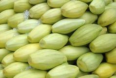 Fruta verde del mango Fotos de archivo libres de regalías